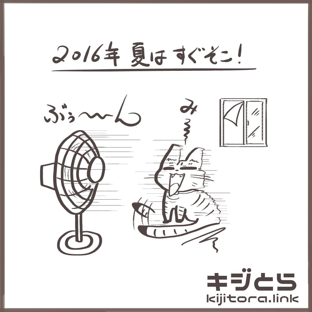 扇風機に当たる猫