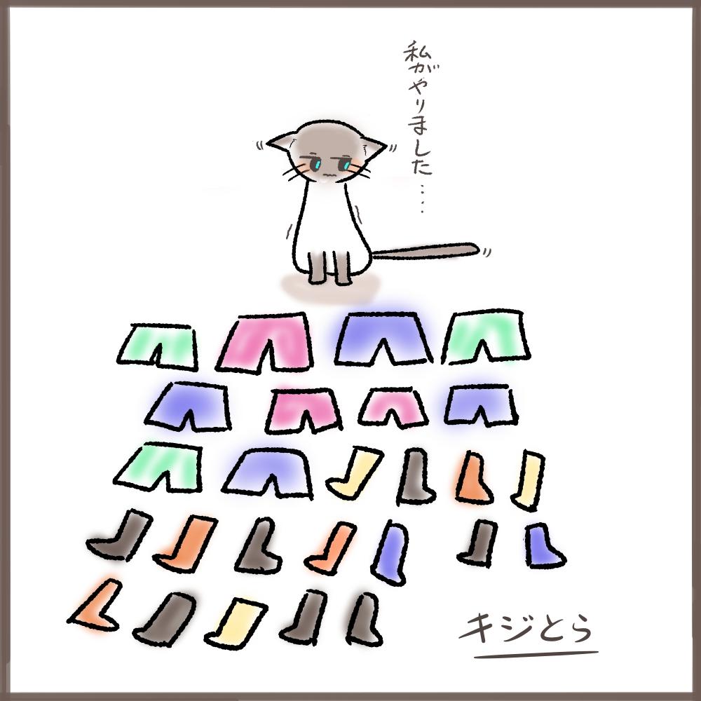 パンツ泥棒猫(並べる)