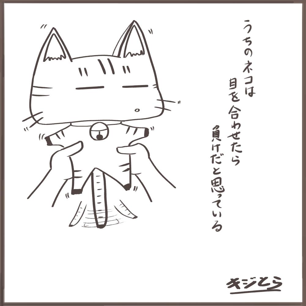 可愛い】猫のイラスト年賀状&テンプレート2018【無料】 | キジとら