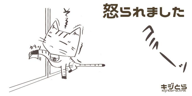 襖を破く猫のイラスト(怒られました)