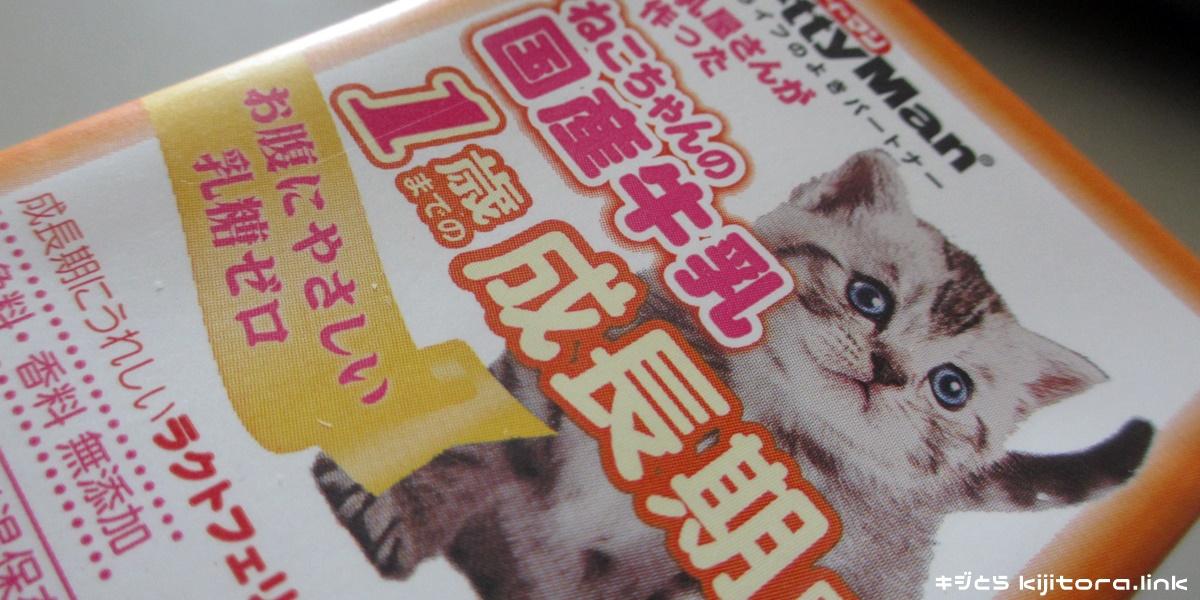 仔猫のミルク