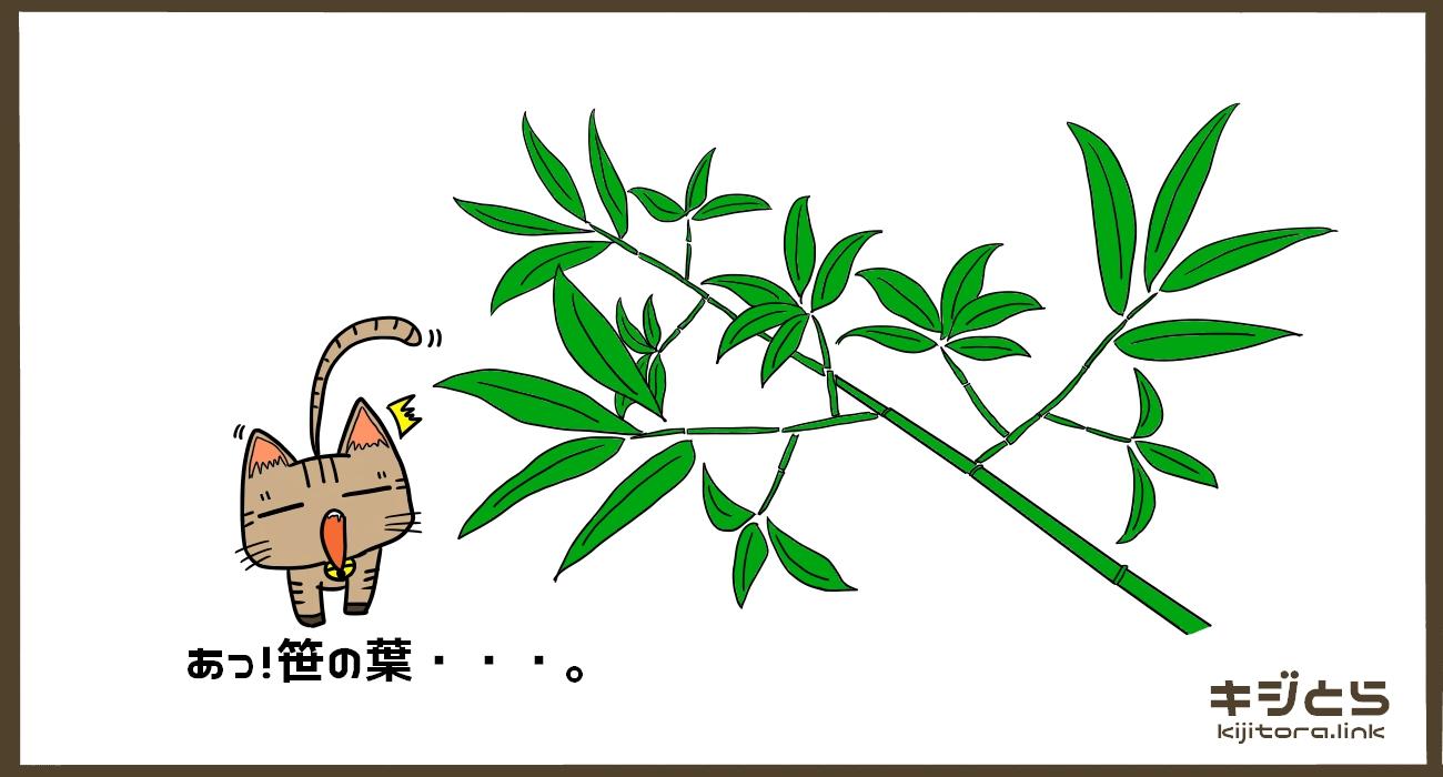 あっ!笹の葉