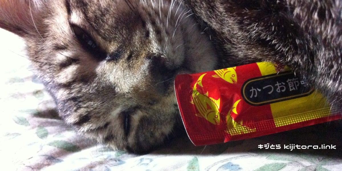ちゅーるを抱きしめて放さないキジトラ猫