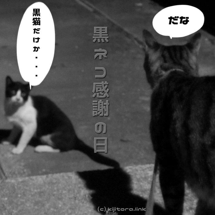 【猫雑学】8月17日は「黒ネコ感謝の日」