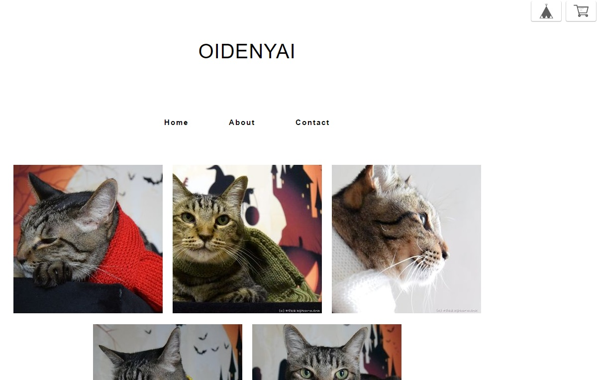 oidenyai