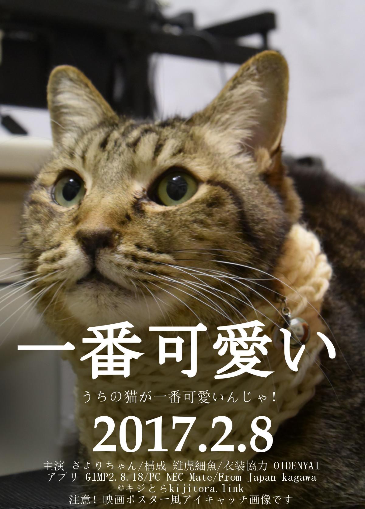 猫用語】うちの猫が世界で一番かわいい   キジとら