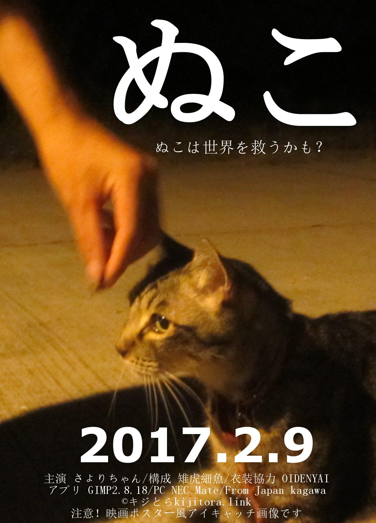 【猫用語】ぬこ・ヌコ