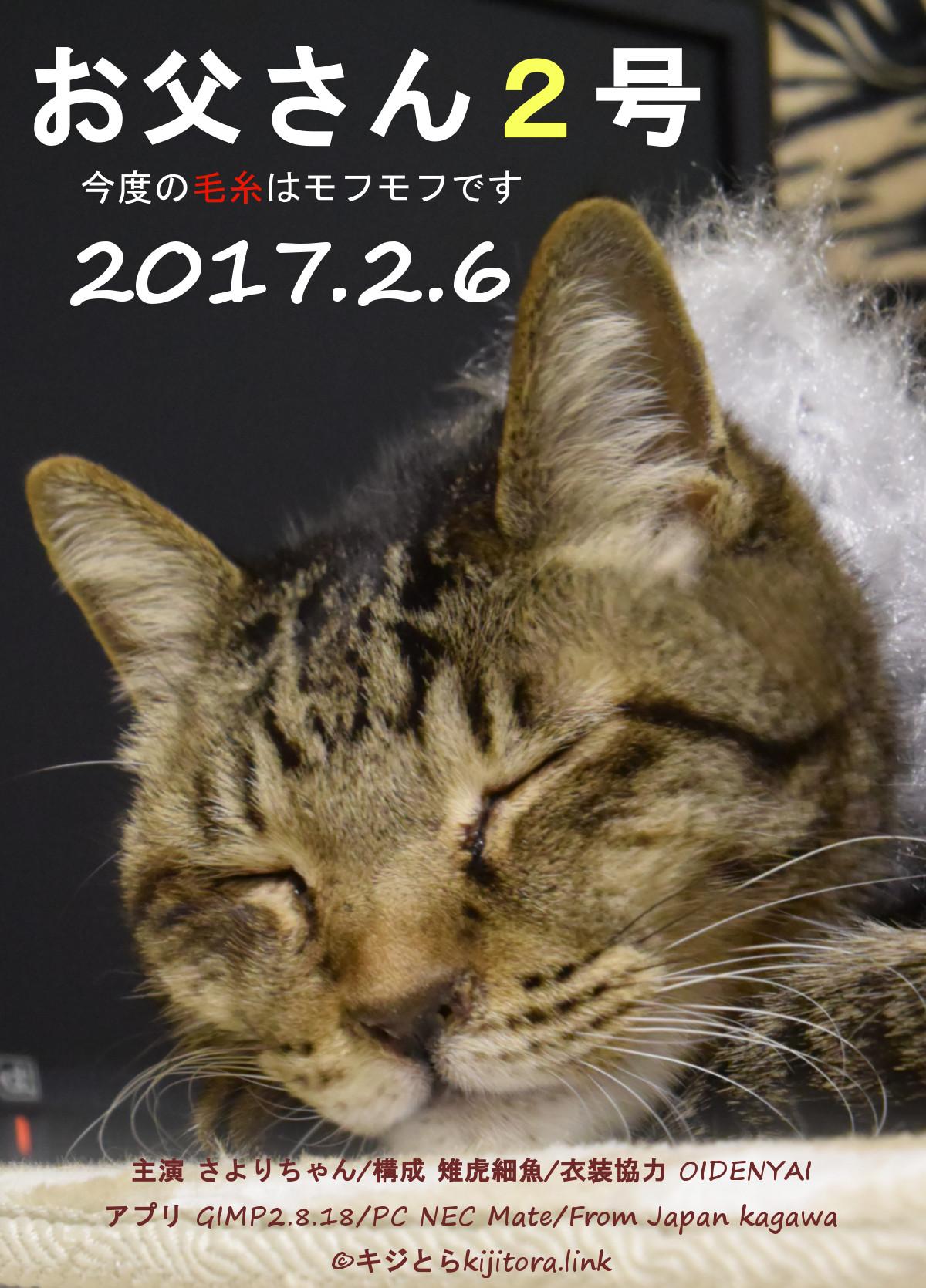 お父さんの猫マフラー2号!毛糸はセリアの「おとめのファー」
