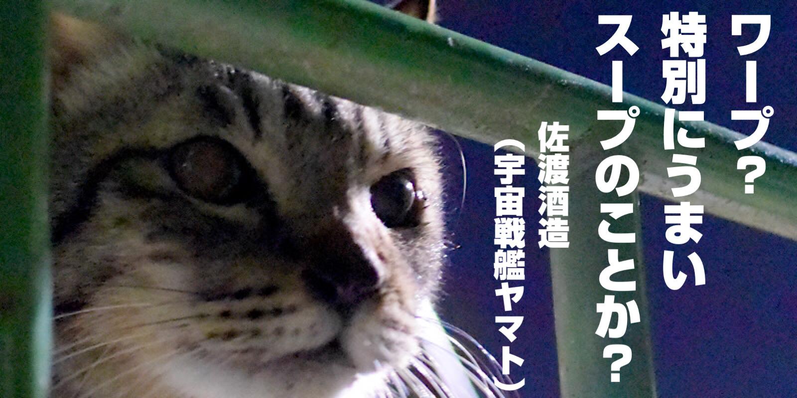 宇宙戦艦ヤマトに登場する猫(ミーくん)は、松本零士先生の飼い猫がモデル