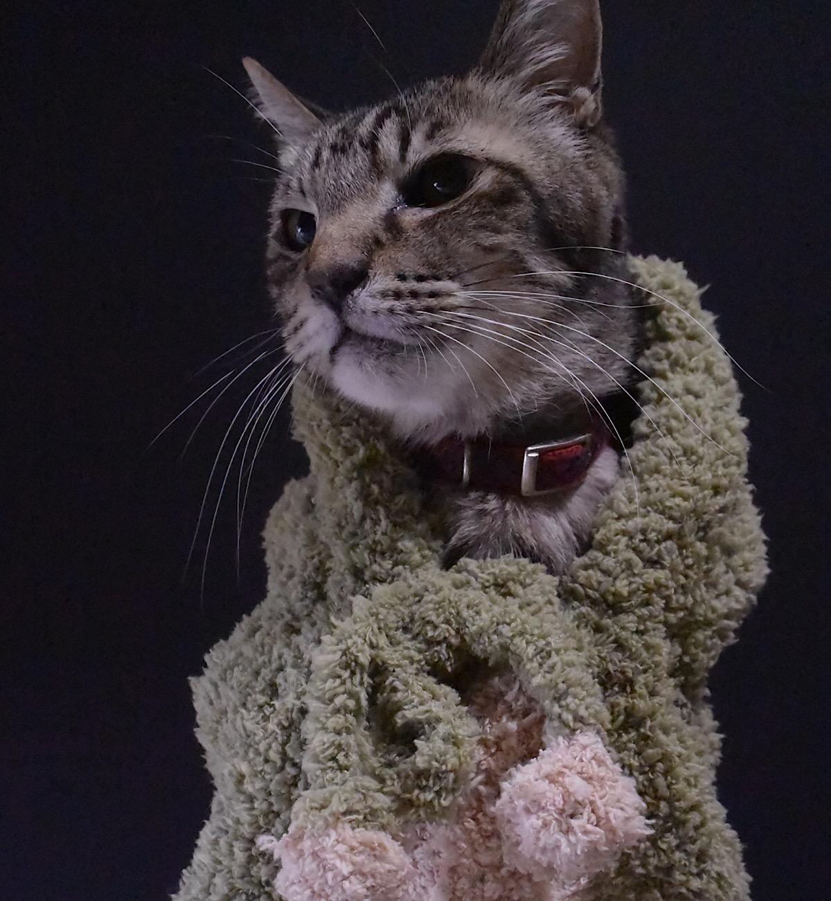 怪獣チックな手編みの着ぐるみ