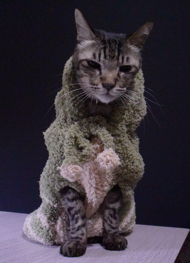 怪獣の手編みのセーター