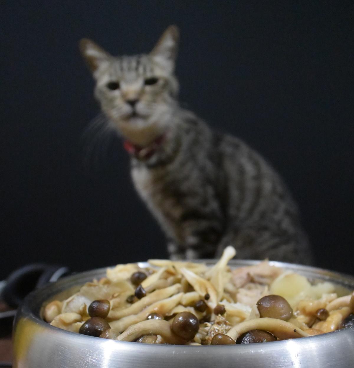 根菜とキノコのダイエットスープ