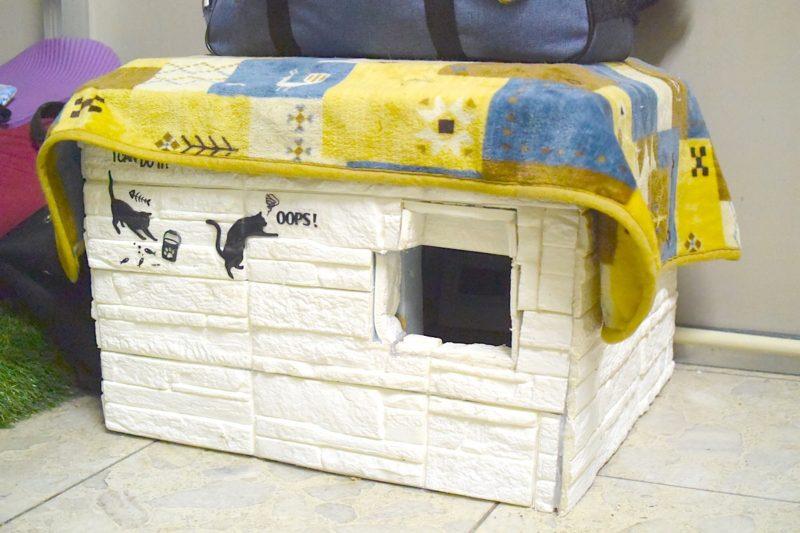 キャットハウス 冷房仕様
