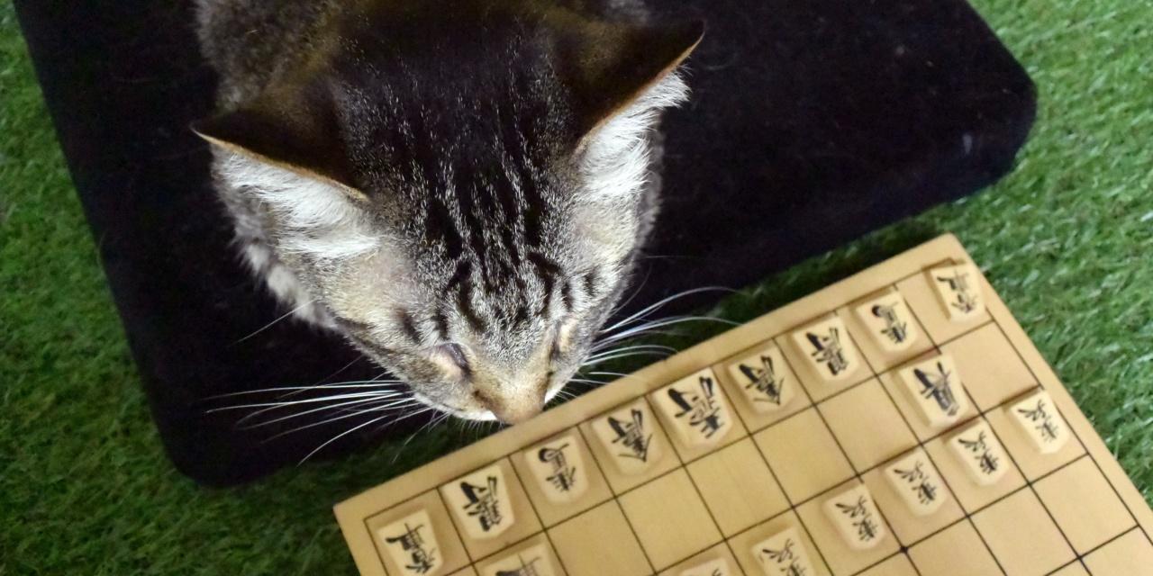 猫の将棋(長考中)