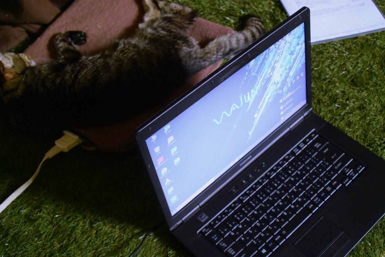 Amazonで買ったワジュンの中古ノートPCとそれに興味なしの猫