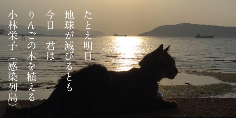 小林栄子(映画感染列島)