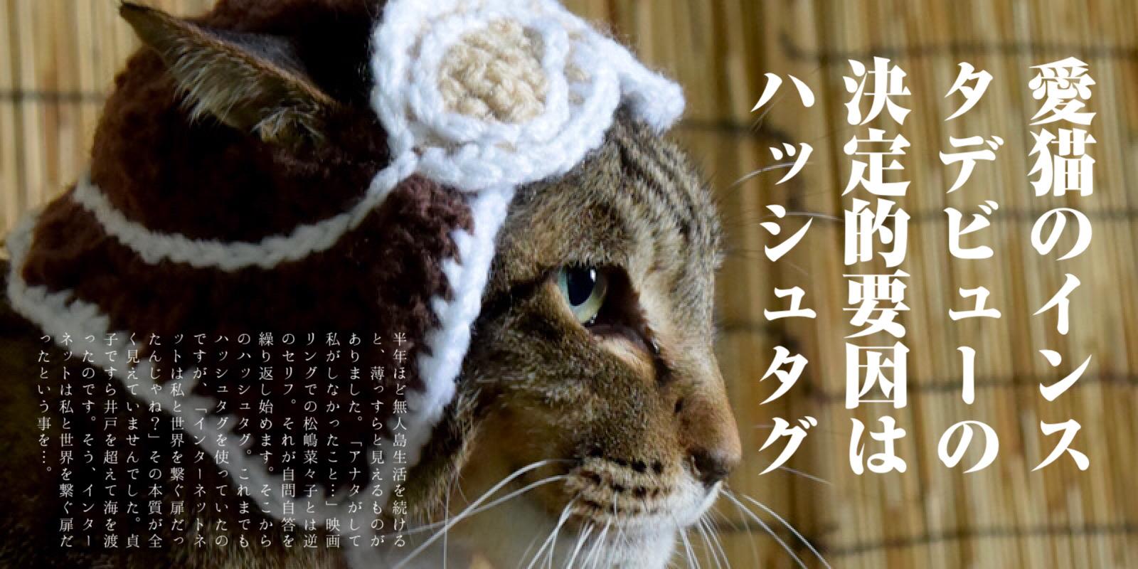 愛猫のインスタデビュー