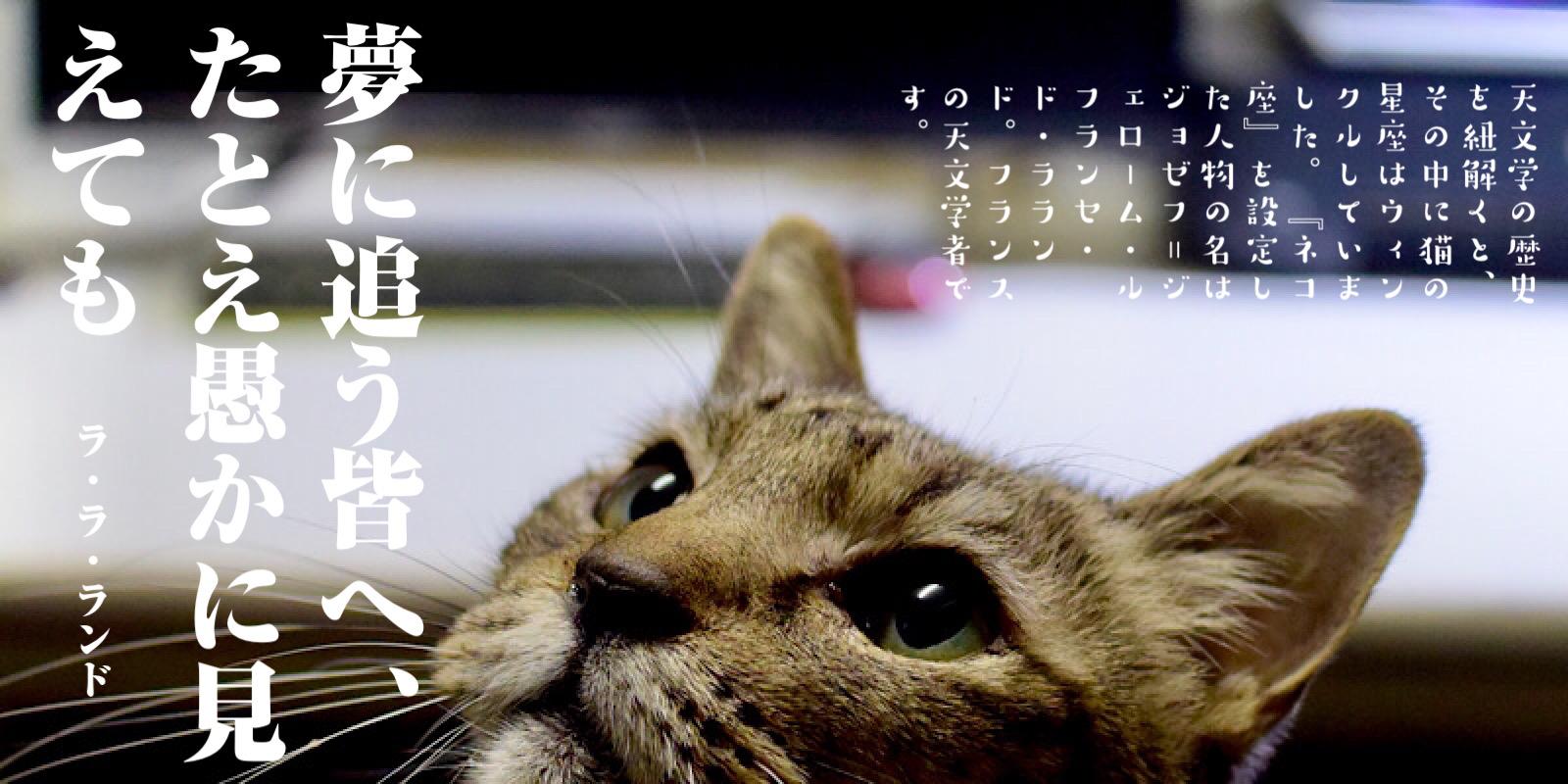 ねこ座・猫座・ネコ座